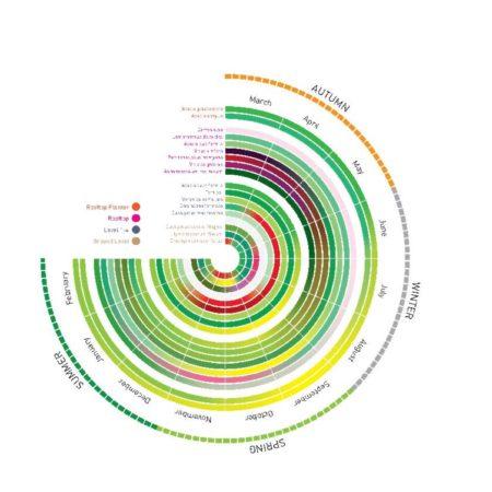 14_Nightingale 2_SBLA_Planting colour diagram