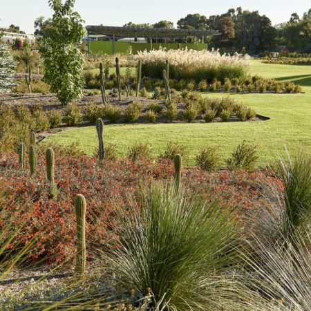 Melbourne Mornington Peninsula Photographer Landscape