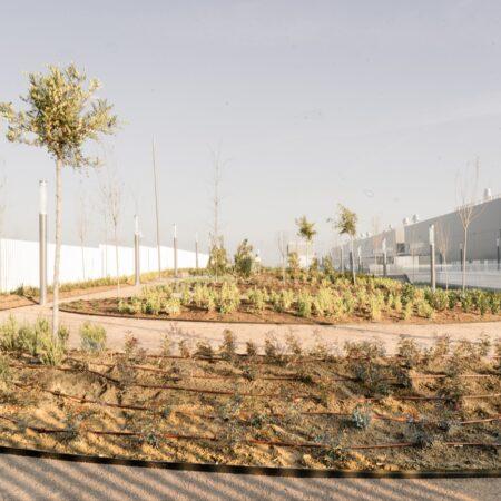 04_Landscape Emergency Hospital Madrid_Wind_Image