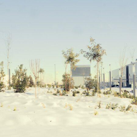 06_Landscape Emergency Hospital Madrid_Snow_Image