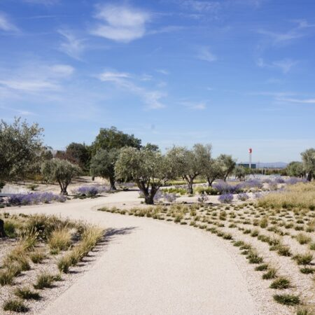 10 NEW GARDENS FOR THE FINANCIAL CITY OF BANCO SANTANDER