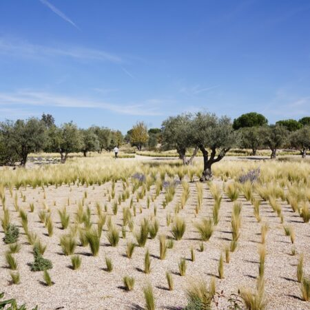 11 NEW GARDENS FOR THE FINANCIAL CITY OF BANCO SANTANDER