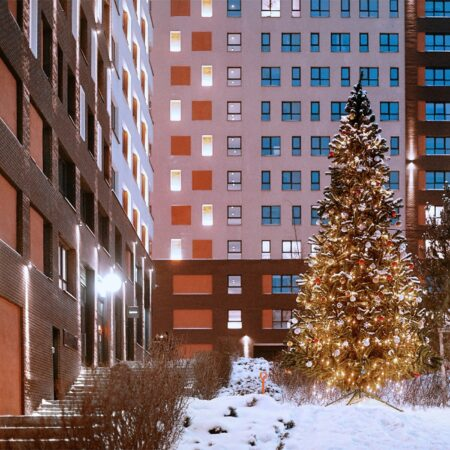 12.A ART RESIDENCY CHRISTMAS TREE ON THE GRE