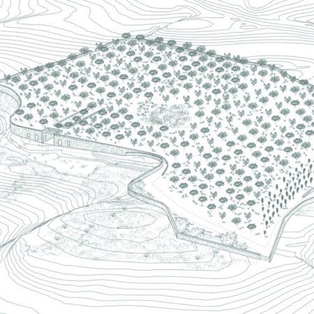 13-Voronoi's Corrals-DECA Architecture