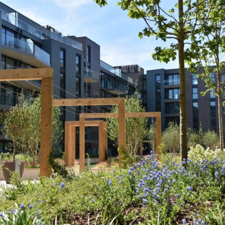 19. Greenwich Square Communal Garden - lush planting 2