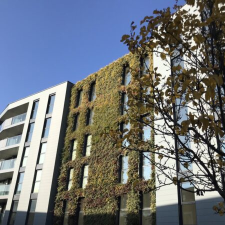 25. Greenwich Square - green wall