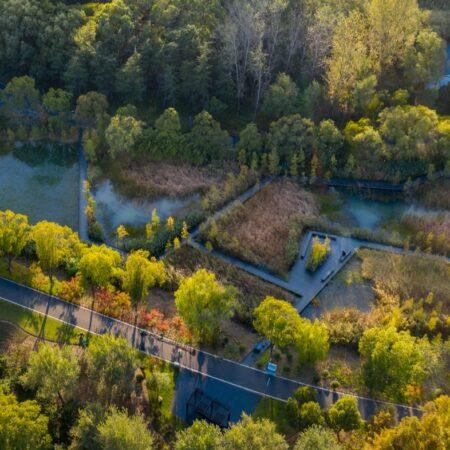 4-plat-studio-forest-park-wetland