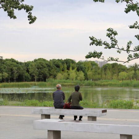 6-plat-studio-forest-park-sitting-plaza