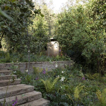 Estudio-Ome-Forest-garden-Nests house_110