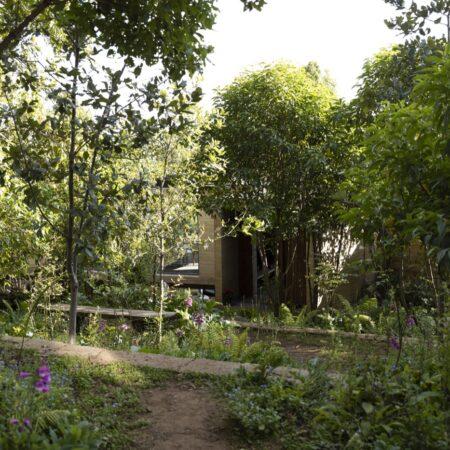 Estudio-Ome-Forest-garden-Nests house_112