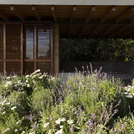 Estudio-Ome-Forest-garden-Nests house_113