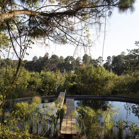 Estudio-Ome-Forest-garden-Nests house_116