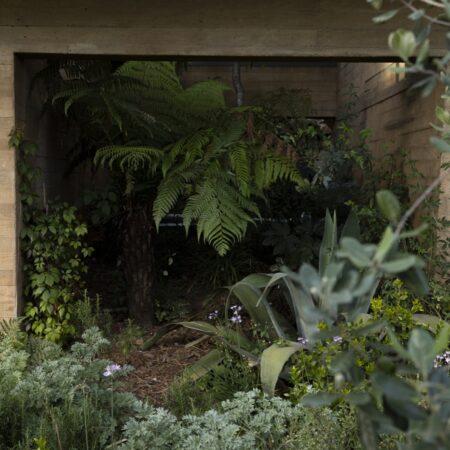 Estudio-Ome-Forest-garden-Nests house_12