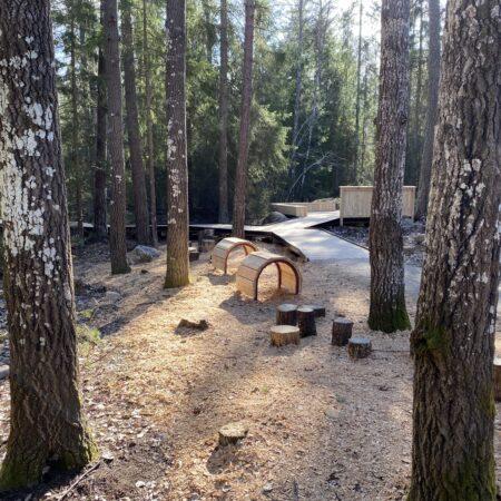 Gorvaln-nature-reserve-3