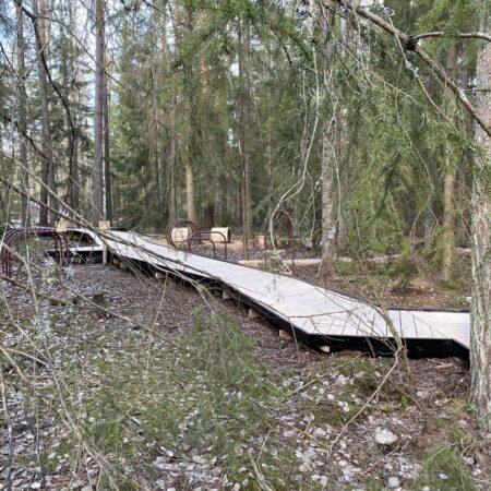 Gorvaln-nature-reserve-6