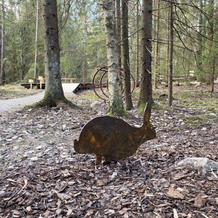 Gorvaln-nature-reserve-7