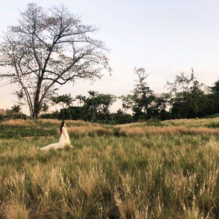 Grasslands_2