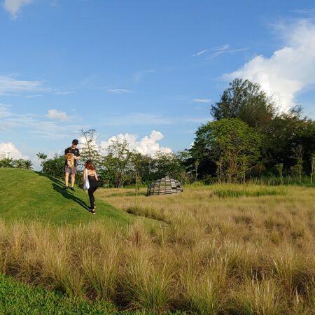 Grasslands_3