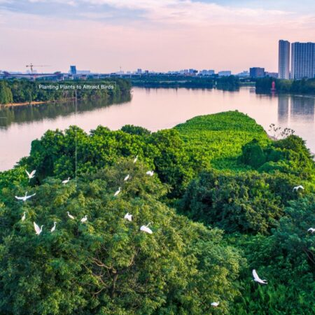 Images_Guangzhou Ecological Belt Master Plan and Implementation_页面_20