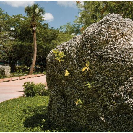 LILA_2021-ArquitectonicaGEO_Univ-of-Miami-Lakeside-Village_Repurposed-Limestone-Boulders