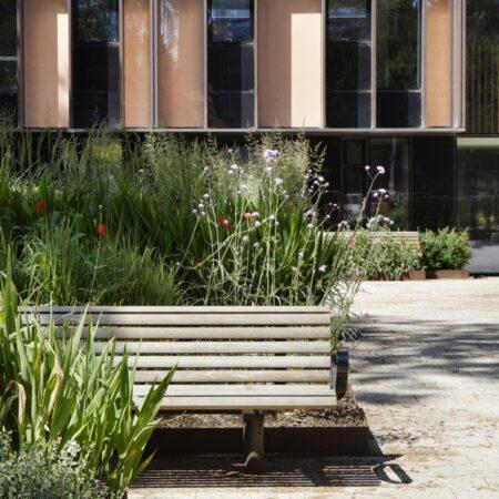 LSC4037 Image 05 Quad seating enclosed by soft landscape Credit Jack Hobhouse