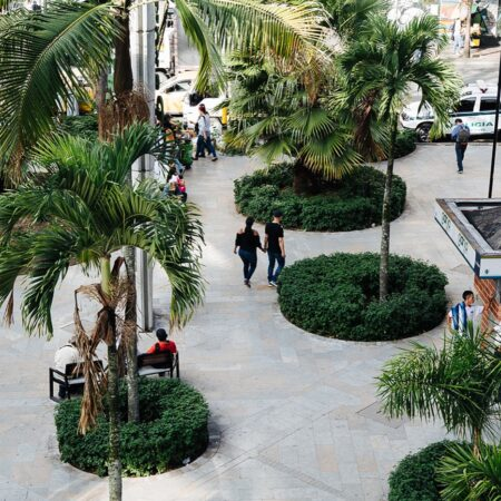 Medellin Downtown's Tropical and Built Landscape-21