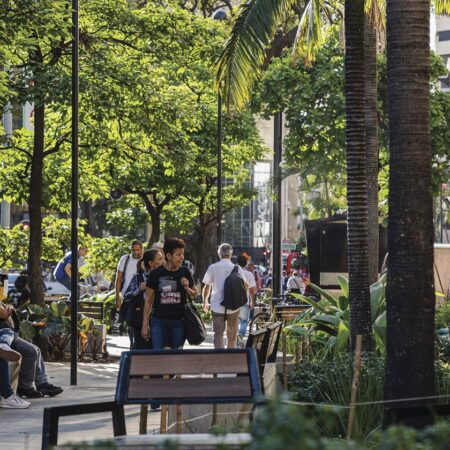 Medellin Downtown's Tropical and Built Landscape-3