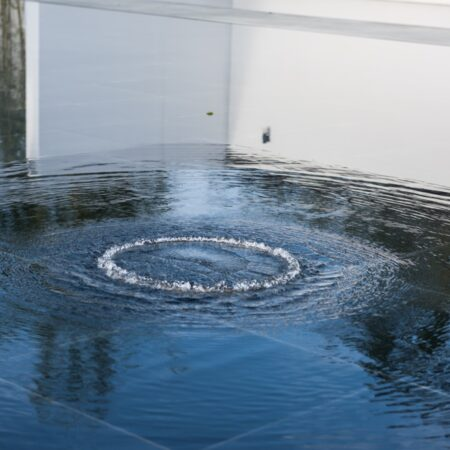 The Courtyard with Ripples (14)