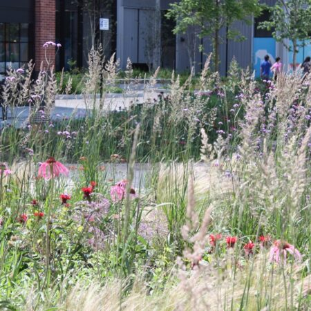 The Meadow at Elephant Park (14) © BD