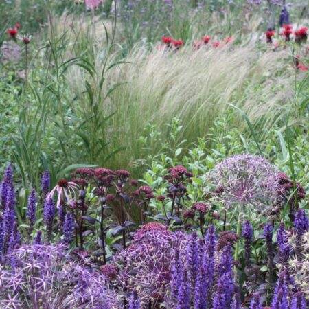 The Meadow at Elephant Park (15) © BD