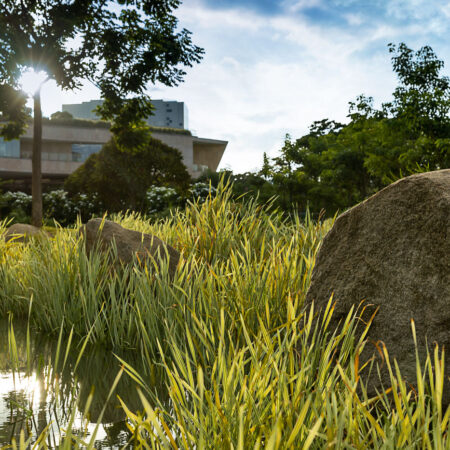 Titan-Campus-One-Landscape-Architects-13