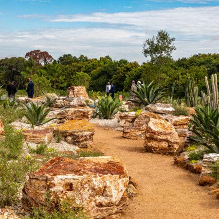 West-8-Houston-Botanic-Garden-©-Barrett-Doherty-(1)