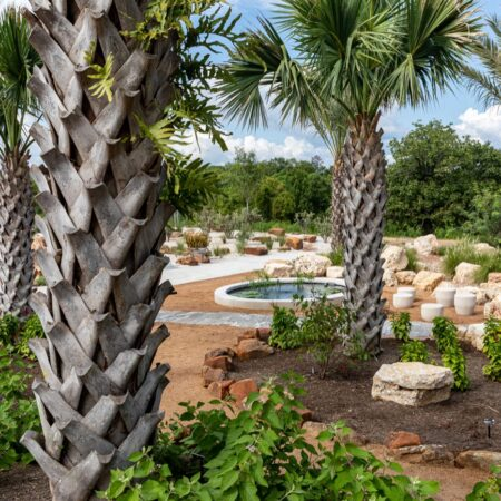 West 8 Houston Botanic Garden © Barrett Doherty (1)