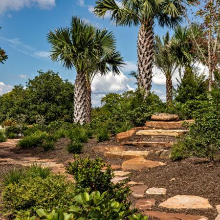 West-8-Houston-Botanic-Garden-©-Barrett-Doherty-(3)