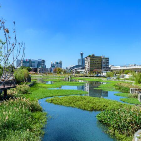 Yong Quan Park-4