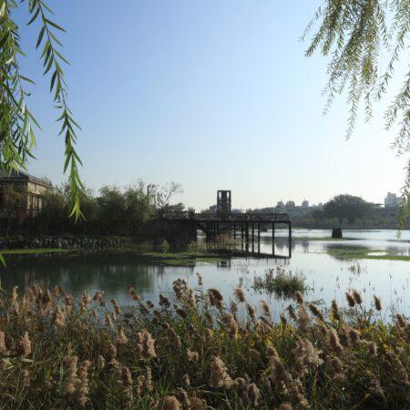 Yong Quan Park-8