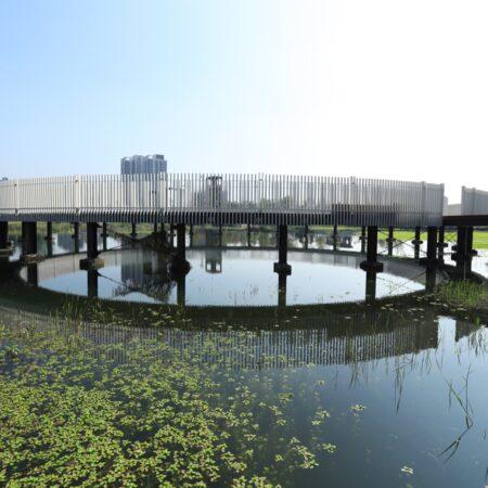 Yong Quan Park-9
