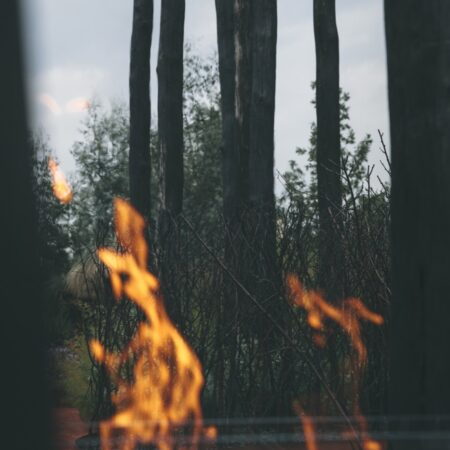 07_Cultivated by Fire