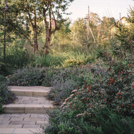 Burova-Julia-Bullys-Garden-7