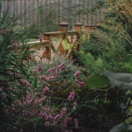 Burova-Julia-Bullys-Garden-9