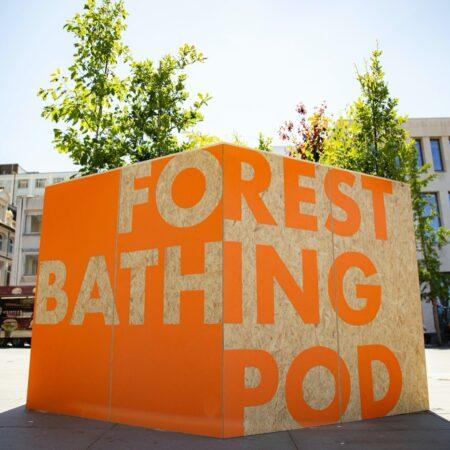 Forest Bathing Pod - WS43
