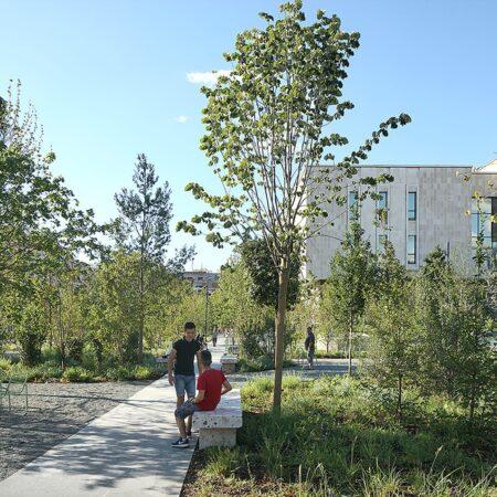 Stratified vegetation