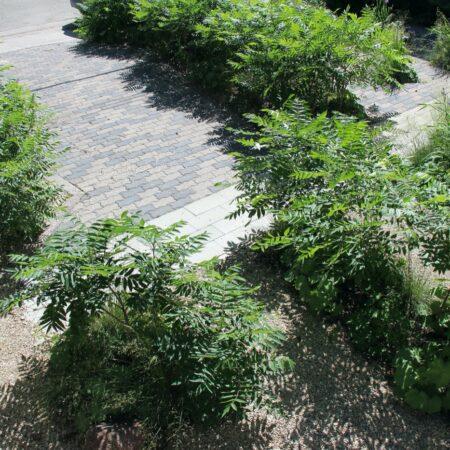 Sumac-Garden-Straub-Thurmayr-6