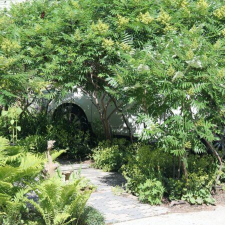 Sumac-Garden-Straub-Thurmayr-7