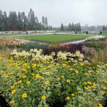 The Aga Khan Garden, Alberta (11)