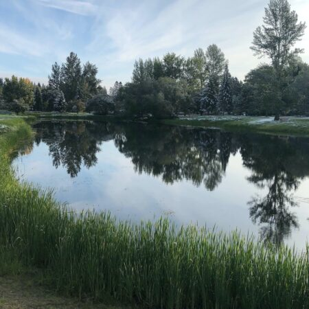 The Aga Khan Garden, Alberta (14)
