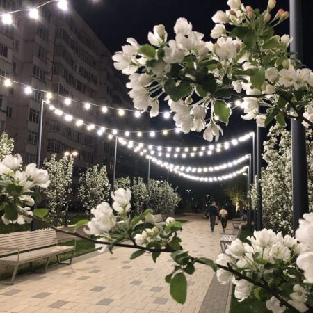 White flowers Boulevard_alley